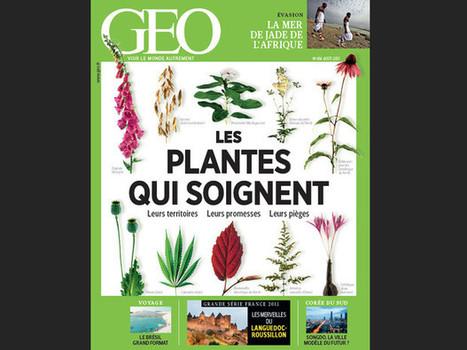 Magazine GEO - Spécial Les plantes qui soignent (n°414, août 2013) : Geo.fr   La nature en ville   Scoop.it