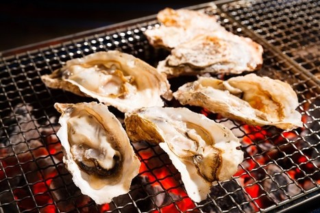 Grilled Oysters Sing with a Side of Riesling   French Wine Regions   Scoop.it