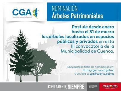 III PUBLIC CALL FOR NOMINATION OF TREES HERITAGE OF CANTON BASIN | Environmental Management Commission | Galapagos | Scoop.it