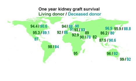 WHO   Outcomes of organ transplantation   Organ Donation   Scoop.it