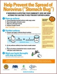 5 Ways to Avoid the Stomach Bug | Mom's Against Cooties | Norovirus | Scoop.it