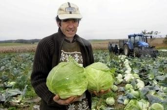Slow food veut faire entrer des produits alsaciens dans son Arche ... - L'Alsace.fr | Fan de Slow | Scoop.it