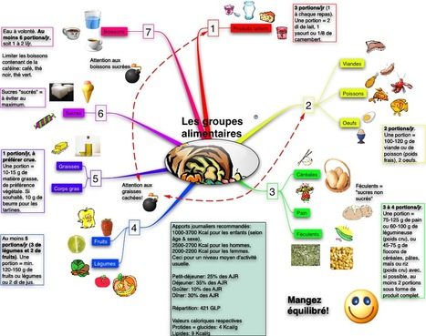 NovaMind Mind Map Document: Les groupes aliment... | Cartes mentales | Scoop.it
