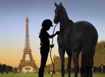 Gagnez 100 places pour le Salon du cheval | nuage | Scoop.it