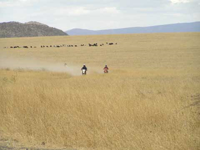 «TANZANIAN SAFARI» A MOTO : VOYAGE VRAIMENT DE REVE… | Moto évasion, moto rêve, motos balades... S'évader en 2 roues | Scoop.it