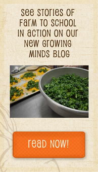 School Gardens - Growing Minds | Teaching Technology To Grades 3-6 - Food Production | Scoop.it