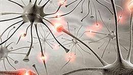 Parasites, Trauma Causes of Epilepsy | Art & Epilepsy | Scoop.it