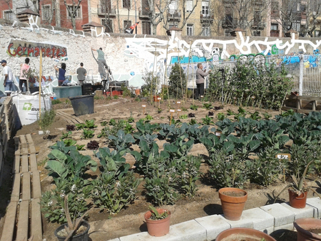 Espai Germanetes: Activating Vacant Space in the Middle of Barcelona | art.media.activism.media.art | Scoop.it