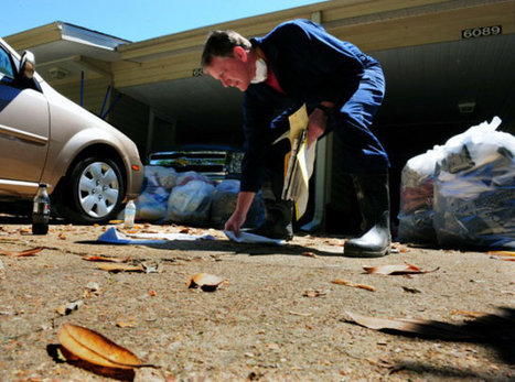 Why Clean Your Leased Property before Leaving It | Home Improvement | Scoop.it