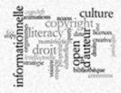 Enquête sur la culture informationnelle liée au droit d'auteur | DROIT D'AUTEUR ET DROITS VOISINS | Scoop.it