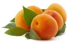 L'abricot, un aliment à calories négatives | Les aliments brûle-graisse | Scoop.it