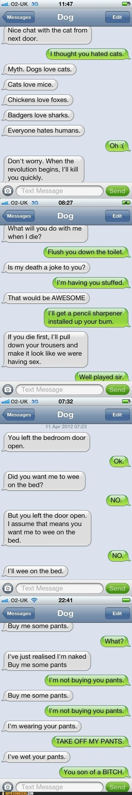 Autocowrecks: If Dogs Could Text, Part II - EPIC FAIL Funny Videos ... | Animal Health | Scoop.it