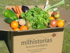 ¿Quién gana con el desprestigio de los alimentos ecológicos? « El ... | Agricultura ecológica y tintes naturales | Scoop.it