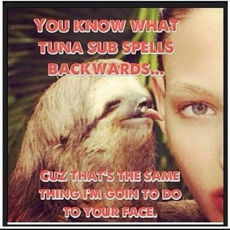Dirty sloth jokes meme - photo#17