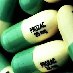 Antidepressants During Pregnancy Linked to Autism Risk | OB's Autism News | Scoop.it