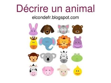 Décrire un animal | Ressources visuelles de FLE | Frenchbook : FLE juniors | Scoop.it