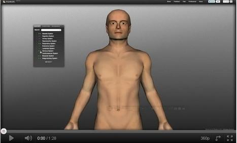 TECNOLOGÍAS DE LA INFORMACIÓN Y LA COMUNICACIÓN: Totalidad del cuerpo humano en 3D   TIC TAC PATXIGU NEWS   Scoop.it