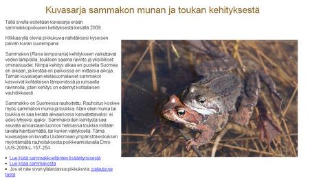 Sammakon kehitys | Biologygeography teaching | Scoop.it