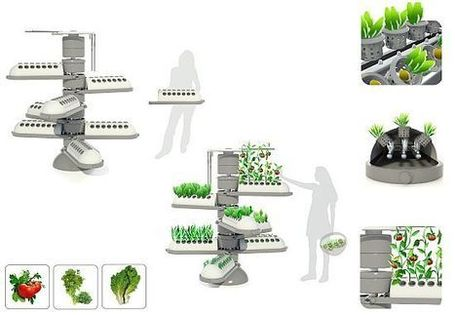 Aero-Tree aeroponic system encourages people to cultivate food | Vertical Farm - Food Factory | Scoop.it