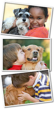 Old Dominion Animal Health Center | Veterinarian McLean VA | Dog Vet McLean | Pet Veterinarian | Health & Wellness | Scoop.it