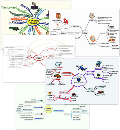 Bienvenue sur le site mindmapping.com ! | com digitale | Scoop.it