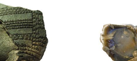 POLOGNE : When hunter met farmer   World Neolithic   Scoop.it