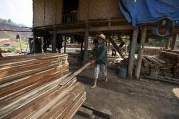 Biomasa - La producción mundial de pélets sigue animando el mercado de la madera - Energías Renovables, el periodismo de las energías limpias. | Biomasa, tecnología sostenible para un futuro duradero! | Scoop.it