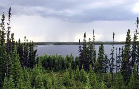Le Canada gravement à la traîne | Scoop des Histoires Naturelles | Scoop.it