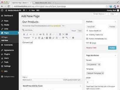 Wordpress Tutorial Eleven | Wordpress For Beginners | General SEO | Scoop.it