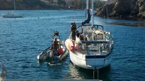CDFW Officers Snag Diver off Catalina Island | All about water, the oceans, environmental issues | Scoop.it