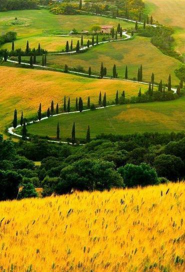 Twitter / planetepics: Zig Zag Road, Tuscany, Italy ... | Locanda la Pieve | Scoop.it