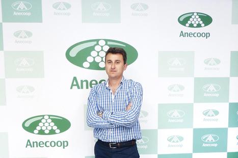 Anecoop: Alejandro Monzón, nuevo presidente | Embalaje en general | Scoop.it