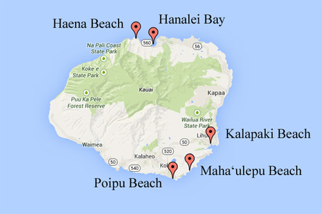 The Most Stunning Beaches in Kauai - Suitcase Stories   Luxury Travel   Scoop.it