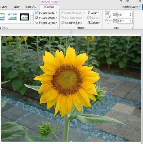 Reset Pictures in PowerPoint 2013 | PowerPoint Tutorials | Scoop.it