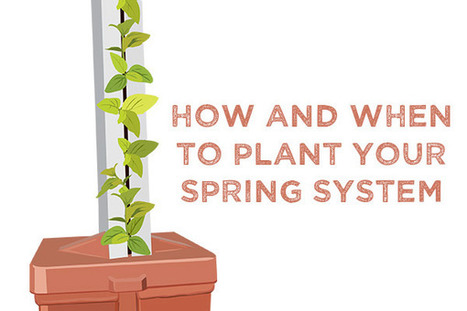 How and When to Plant Your Spring System - Bright Agrotech | Vertical Farm - Food Factory | Scoop.it