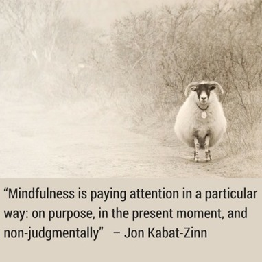The Benefits of Using Data to Bring Mindfulness to Your Work   Education Leadership   Scoop.it