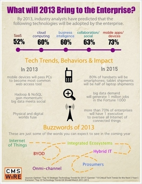 2013 Predictions of Enterprise Technology Adoption: Mobile, Social and Business Intelligence | Colt Cloud Services | marketing numérique | Scoop.it