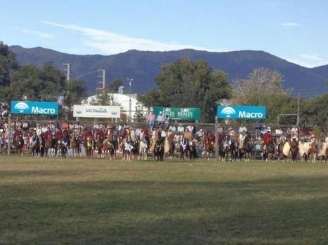 Los mejores Caballos Peruanos de Paso se presentan en Salta - La Gaceta de Salta | Caballo, Caballos | Scoop.it