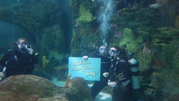#Scuba Diving Man Proposes to Woman in Ripley's Aquarium Tank | Scuba Diving News | Scoop.it