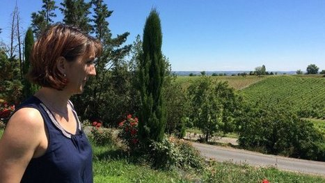 Une femme à la tête du syndicat des Vignerons Indépendants du Tarn. | Verres de Contact | Scoop.it