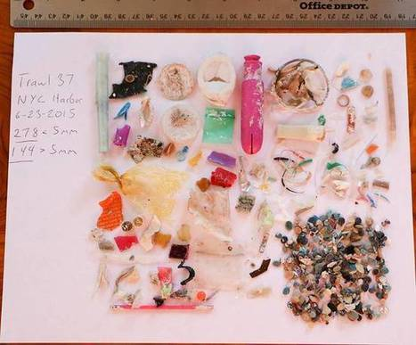 5 Gyres Exposes Microplastics In The Los Angele...   Marine Litter   Scoop.it