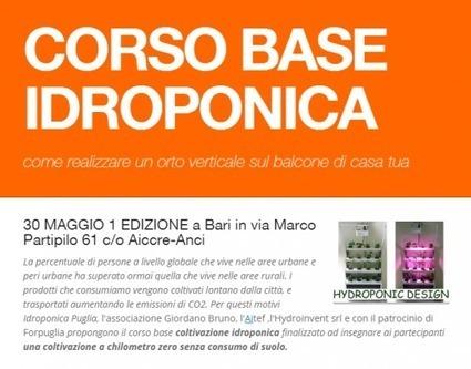 CORSO BASE IDROPONICA   HYDROINVENT s.r.l.   Idroponica   Scoop.it