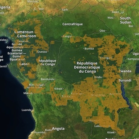 GeoJournalism Shines New Light on Central Africa with Launch of InfoCongo | Multimedia Journalism | Scoop.it
