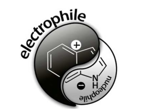 "Electrophilicity: the ""Dark-Side"" of Indole Chemistry 