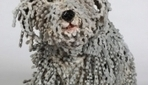 Amazingly Realistic Dog Sculptures Created From Bicycle Chains | IB stuff | Scoop.it