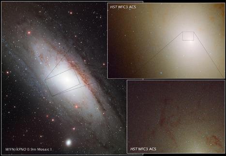 NASA - Rare Ultra-blue Stars Found in Neighboring Galaxy's Hub | Astronomy Domain | Scoop.it