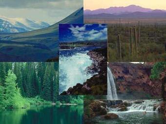 ¡Te lo volvemos a preguntar! ¿Conoces las diferencias entre estos 2 conceptos ecológicos? | BIOMAS | Scoop.it