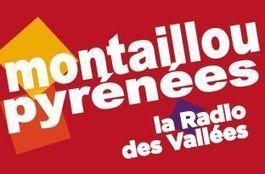 Radio Montaillou est devenue Pyrénées FM | Radioscope | Scoop.it