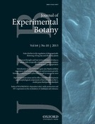 Enhanced drought and heat stress tolerance of tobacco plants with ectopically enhanced cytokinin oxidase/dehydrogenase gene expression | Plant Gene Seeker -PGS | Scoop.it