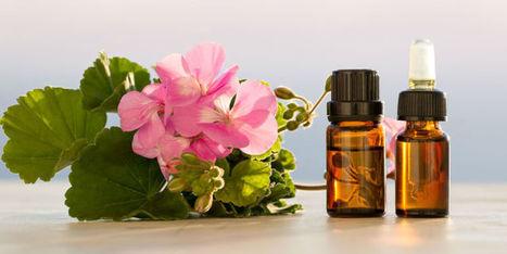 Aromathérapie : les vertus de l'huile essentielle de géranium | La Cabane aux Arômes | Scoop.it